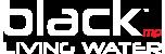 BlackMP.net